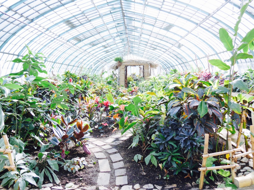 Le jardin des serres d 39 auteuil un orage en t for Le jardin des serres d auteuil