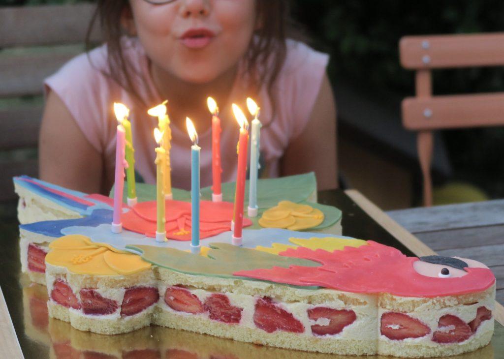 gateau anniversaire bcp de bougies